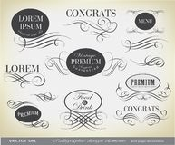 Calligraphic design elements and page decoration. This is file of EPS10 format Royalty Free Stock Image