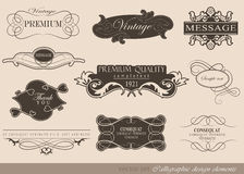 Calligraphic design elements Stock Images