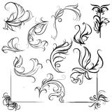 calligraphic design elements and page decoration, patterns and curls Stock Photo