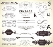 Calligraphic design elements Stock Photo