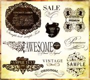 Calligraphic design elements. And page decoration/  set Royalty Free Stock Image