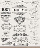 Calligraphic design elements, page decoration Stock Image