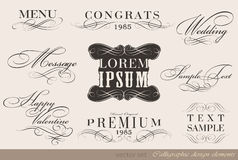 Calligraphic design elements. And page decoration/ vector set Stock Photography