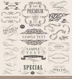 Calligraphic design elements Royalty Free Stock Photos