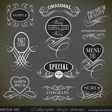Calligraphic design elements and page decoration/ Stock Photos