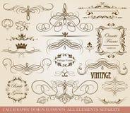 Calligraphic design elements Royalty Free Stock Photo