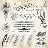 Calligraphic design elements Stock Photography