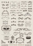 Calligraphic design ornaments Royalty Free Stock Photos