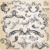 Calligraphic designbeståndsdelar Arkivfoton