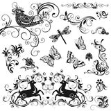 Calligraphic designbeståndsdelar Royaltyfri Bild