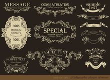 Calligraphic designbeståndsdelar Royaltyfri Fotografi