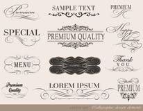 Calligraphic designbeståndsdelar royaltyfri illustrationer
