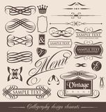 Calligraphic designbeståndsdelar för tappning Arkivfoto
