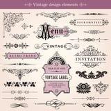 Calligraphic designbeståndsdelar för tappning och sidagarnering Arkivfoto
