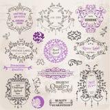 Calligraphic designbeståndsdelar och sidagarnering Royaltyfri Bild