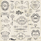 Calligraphic designbeståndsdelar och sidagarnering Arkivbild