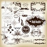 Calligraphic designbeståndsdelar och sidagarneringar i retro utformar Arkivbild