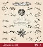 calligraphic designelement Royaltyfria Bilder