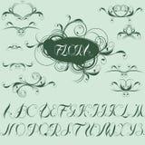 calligraphic designelement för alfabet Arkivfoto