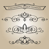 Calligraphic elements. In classical style Stock Photo