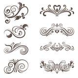 Calligraphic  elements Stock Image