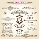 Calligraphic elements vintage retro