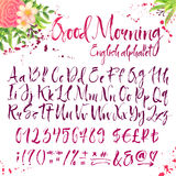 Calligraphic english alphabet with decorations Royalty Free Stock Images