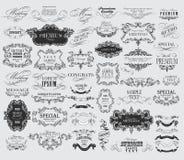 Calligraphic floral design elements Stock Photo