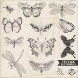 Calligraphic hand drog fjärilar stock illustrationer