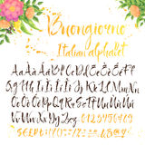 Calligraphic italian alphabet with decorations Royalty Free Stock Images