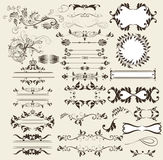 Calligraphic retro vector elements and page decorations Royalty Free Stock Photo