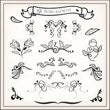 Calligraphic swirls Stock Images