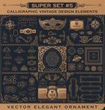 Calligraphic tappningbeståndsdelar Vektorbarockuppsättning Designsymboler Royaltyfria Bilder