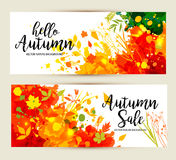 Calligraphic Text Sale on multicolor blots background. Hand draw Stock Image