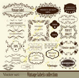 Calligraphic vector Stock Photography