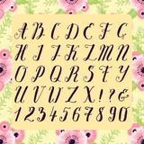 Calligraphic vector font with floral nature numbers ampersand and symbols flower hand drawn alphabet lettering stock illustration