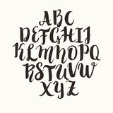 Calligraphic vector font. Lettering latin alphabet, capital letters Stock Image