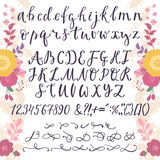 Calligraphic vector font with numbers ampersand and symbols flower hand drawn alphabet lettering Stock Photography