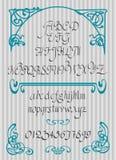 Calligraphic vector script font. Handwritten brush style modern Royalty Free Stock Photo