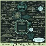Calligraphic vintage design elements Stock Photography