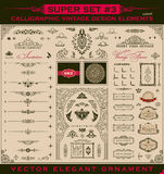 Calligraphic vintage elements. Vector baroque set Royalty Free Stock Photos