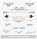 Calligraphic vintage elemets and symbols set Stock Photos