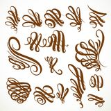 Calligraphic vintage rounded curls elements set Stock Photo