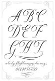 Calligraphy alphabet with numbers Royalty Free Stock Photo