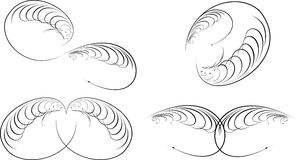 Calligraphy Baroque Curves. Royalty Free Stock Image