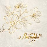 Calligraphy cherry blossom. Royalty Free Stock Images