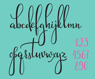 Calligraphy cursive font. Handwritten pointed pen ink style modern calligraphy cursive font. Calligraphy alphabet. Cute calligraphy letters and figures. Isolated Royalty Free Stock Photography