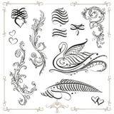 Calligraphy, Design Elements Stock Photos