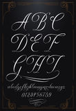 Calligraphy lettering with numbers. Hand drawn vector calligraphy tattoo alphabet with numbers Royalty Free Stock Image