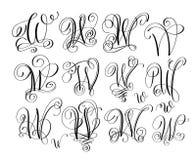 Calligraphy lettering script font w set, hand written. Signature letter design, vector illustration Stock Images